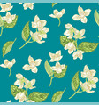 Jasmine flowers seamless pattern in realistic