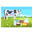 landscape with cow and milk products on the vector image vector image