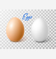 realistic chicken brown egg easter spring vector image vector image
