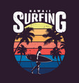 vintage colorful hawaii surfing label vector image vector image