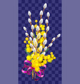 yellow mimosa and fluffy branch of pussy willow vector image vector image