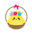 cute cartoon rooster chicken sitting in basket vector image vector image