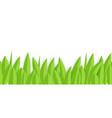 green paper grass horizontal seamless border vector image vector image