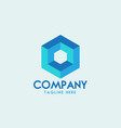 hexagon logo design vector image