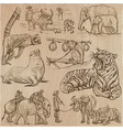 animals - an hand drawn pack collection vector image