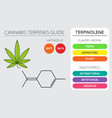 cannabis terpene guide information chart aroma vector image vector image