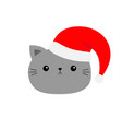 cute cat icon face in red santa hat merry vector image