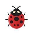 flat style of ladybug vector image vector image