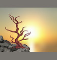 landscape on the sunset a curved tree without vector image vector image