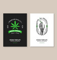 medical cannabis poster flyer template vector image vector image