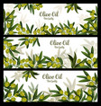 olive oil best quality banners vector image vector image