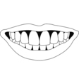 perfect smile teeth vector image vector image