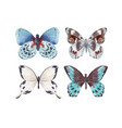 watercolor butterflies set vector image vector image