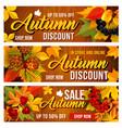 autumn sale discount banners set vector image vector image