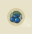 blueberry cornelian cherry vector image vector image