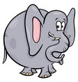 elephant animal cartoon character vector image vector image