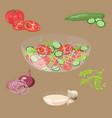 fresh vegetables salad vector image vector image
