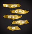 Golden Low Poly labels vector image vector image