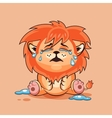 Lion cub is crying vector image