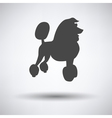 Poodle icon vector image vector image