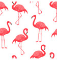 Seamless pattern with red flamingo