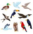 set of stylized birds image of wild birds vector image
