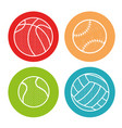 sport balls isolated icon vector image vector image
