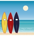 Three surf Boards beach holidays Extreme sport vector image