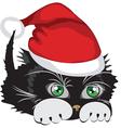 kitten wearing a santa claus hat vector image