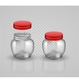 Glass Jars for canning and preserving With cover vector image vector image