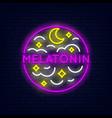 melatonin neon banner vector image vector image