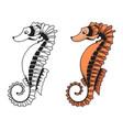 a sea horse vector image