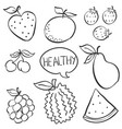 doodle of fruit various hand draw vector image vector image