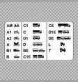 drivers licenses symbols vector image
