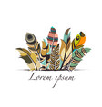 feathers with text vector image vector image