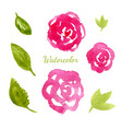 flowers watercolor collection flowers and leaves vector image vector image