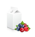 forest fruit yogurt pack mixed berry and package vector image vector image