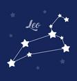 leo sign constellation icon on dark vector image vector image