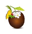 Tropical cocktail in coconut vector image vector image