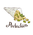 Bundle of newsprint with roasted pistachio nuts vector image vector image