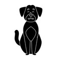 cute dog cartoon vector image vector image