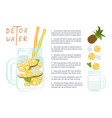 fruit cocktail for healthy life vector image