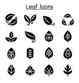 leaf icon set graphic design vector image vector image