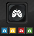 Lungs icon symbol Set of five colorful stylish vector image vector image