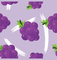 seamless pattern with grapes and leaves vector image