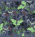 seamless pattern with saturnia moths and dead vector image