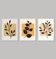 set botanical art prints vector image vector image