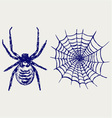 Spider and cobweb vector image vector image