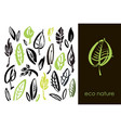 set of hand drawn leaves green leaf sketches and vector image