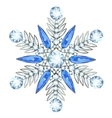 jewelry in form snowflake vector image vector image